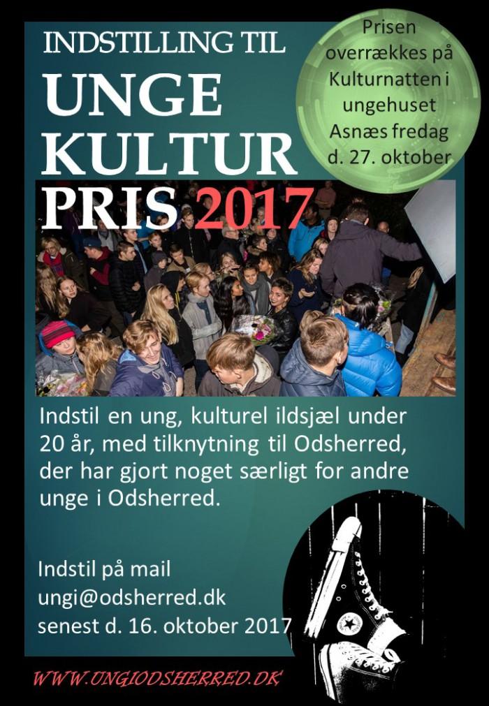 Plakat indstilling 2017